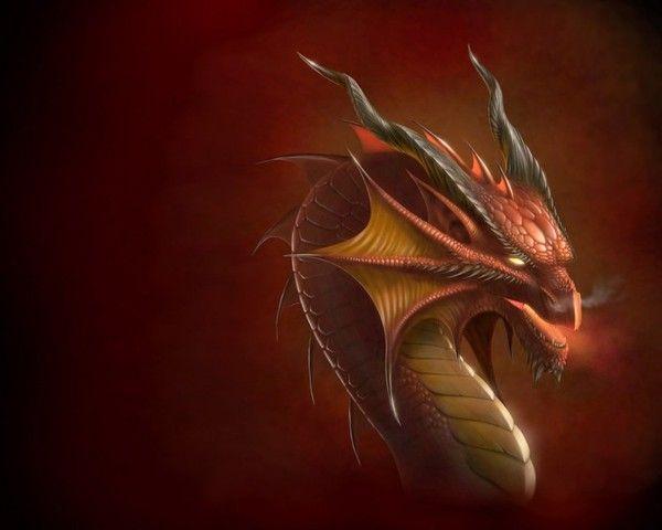 Les dragons  - Page 3 10c02ce0