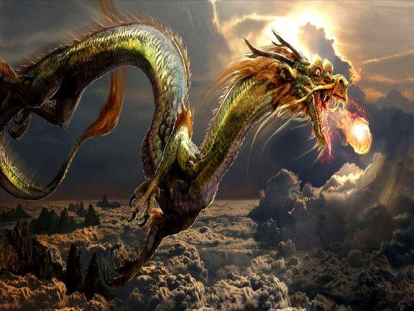 Les dragons  - Page 3 1151c683