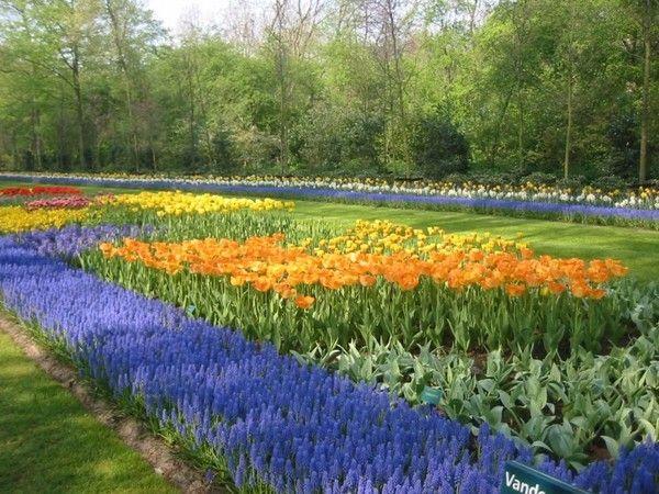 Fond ecran parc et jardin - Fond d ecran jardin anglais ...