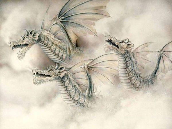 Les dragons  - Page 3 5b6b4175