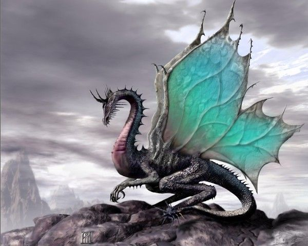 Les dragons  - Page 3 85701b3e
