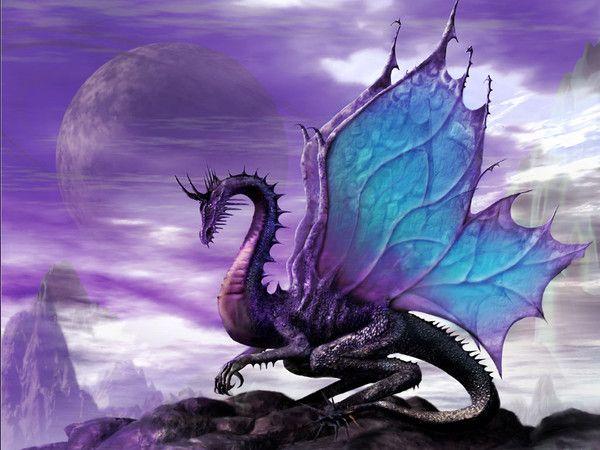 Les dragons  - Page 3 90f38d8f