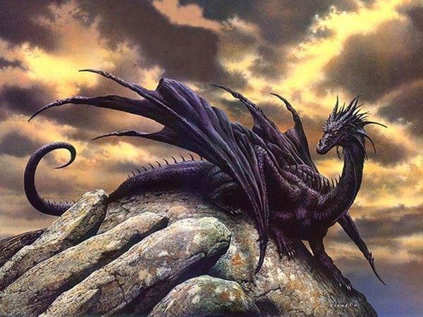 Les dragons  - Page 3 9b1dc638